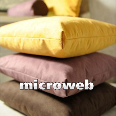 Microweb