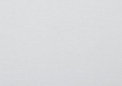 ASTORIA-01-white