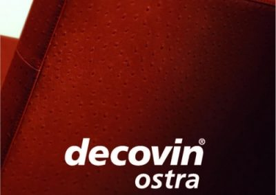 decovin-ostra-titelblatt-jan2009-homepage
