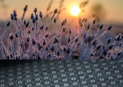 englisch dekor sunset kalt